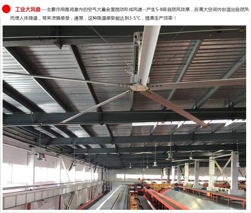 product-Xingke-Industry Big Fan for Cooling-img